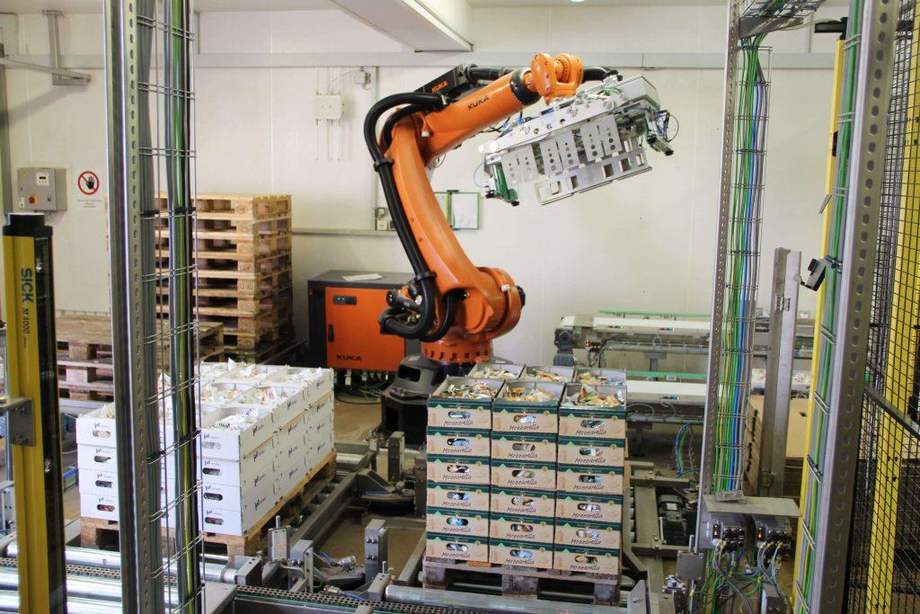 Paletizatory M.A.S. Automation 6 1 1